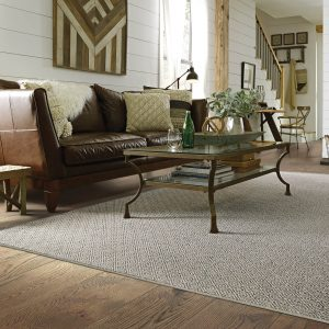 Grey Carpet | Shelley Carpets