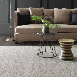 Living room grey Carpet | Shelley Carpets
