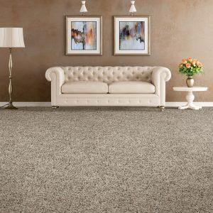Grey Carpet flooring | Shelley Carpets