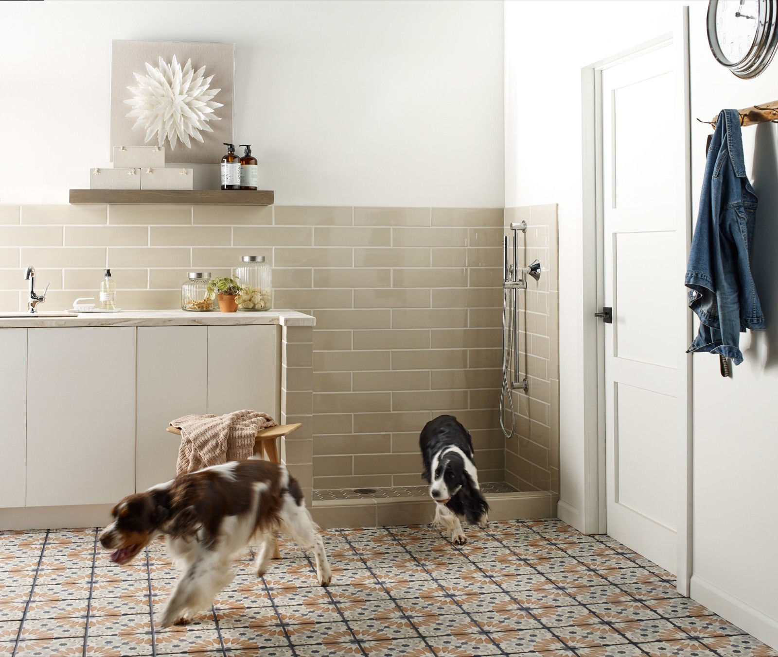 Dogs on floor | Shelley Carpets